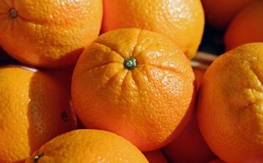 Vitamin C für die Jugendarbeit!