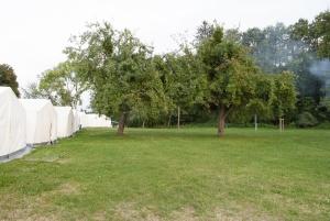 Blick vom Mitarbeiterzelt auf die Schlafzelte und schönen Obstbäume